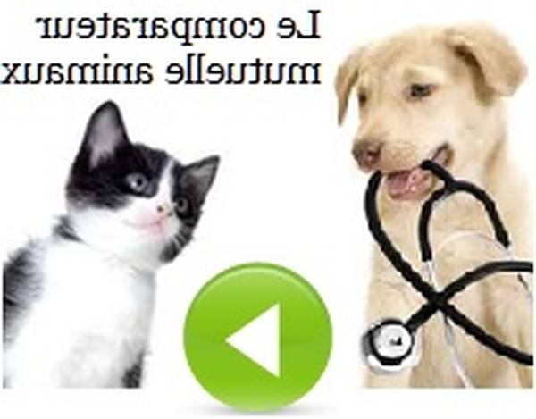 mutuelle animaux carrefour